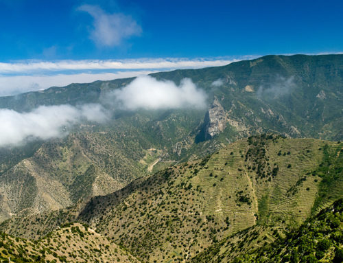 370 km², nespočetné množstvo pokladov: smer La Gomera, 1. časť